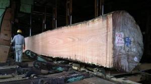 7 アパ材原木製材の様子(製材所にて)